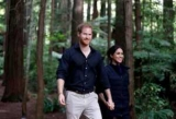 Принц Гарри и Меган Марсель организовали день рождения от приверженности другое: что случилось?