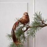 Птицы из шишек: мастер-класс
