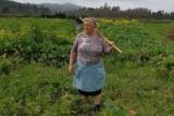 В испанский народ обнаружил к бабушке-двойной trump